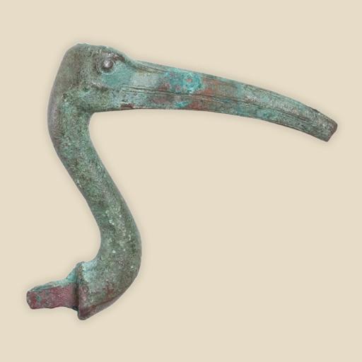 head of ibis