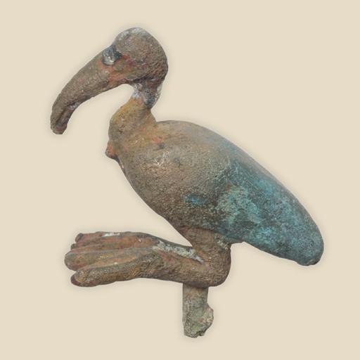 ibis figure