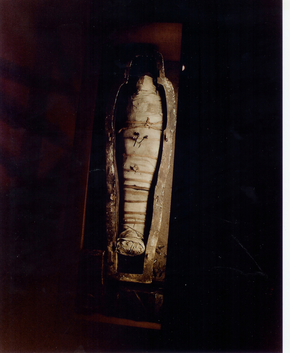 Coffin with mummy inside